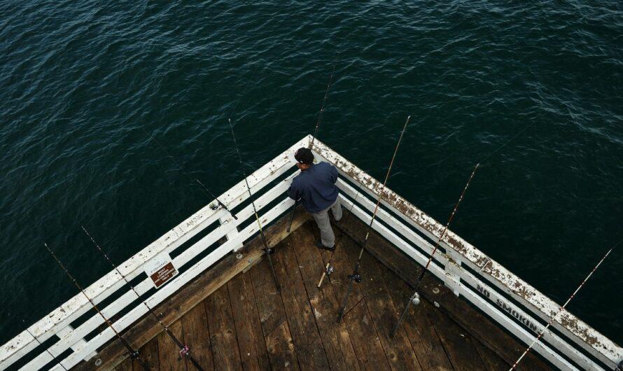 Rybářské sety jsou ideální volbou pro začínající rybáře