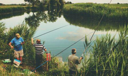 Rybáři využívají při rybolovu rybářské stojany.