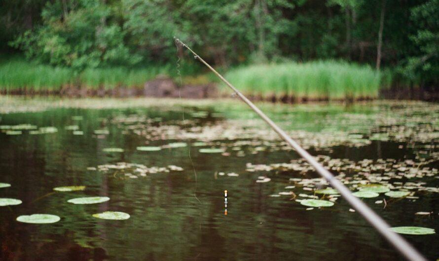 Rybářské zátěže lze volit na základě mnoha parametrů