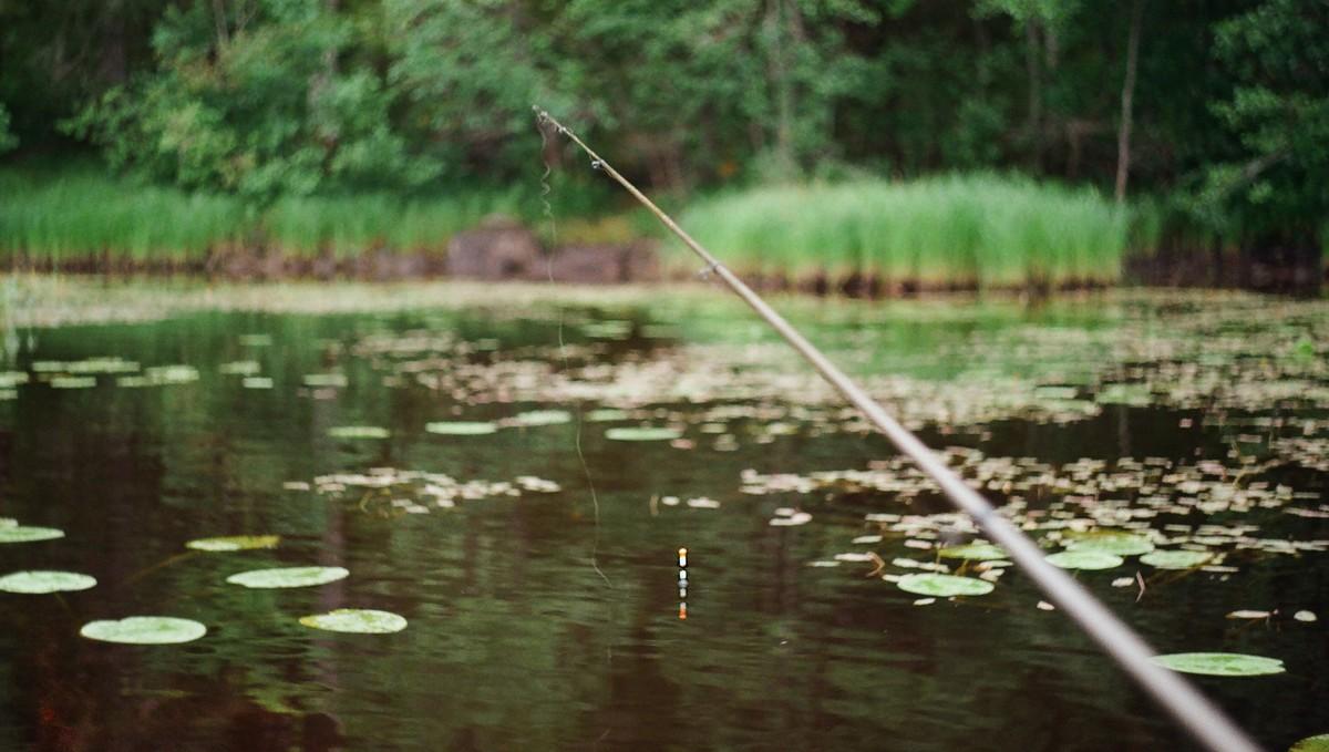 Rybářské zátěže se osvědčili při nahazován na rybníce.