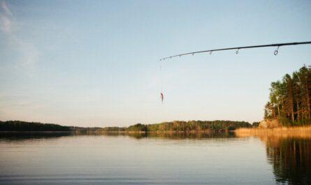 Rybářský prut nad hladinou jezera.