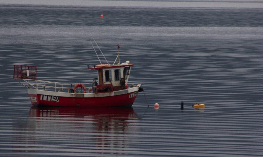 Chytání ryb z lodi přináší jiný způsob rybolovu
